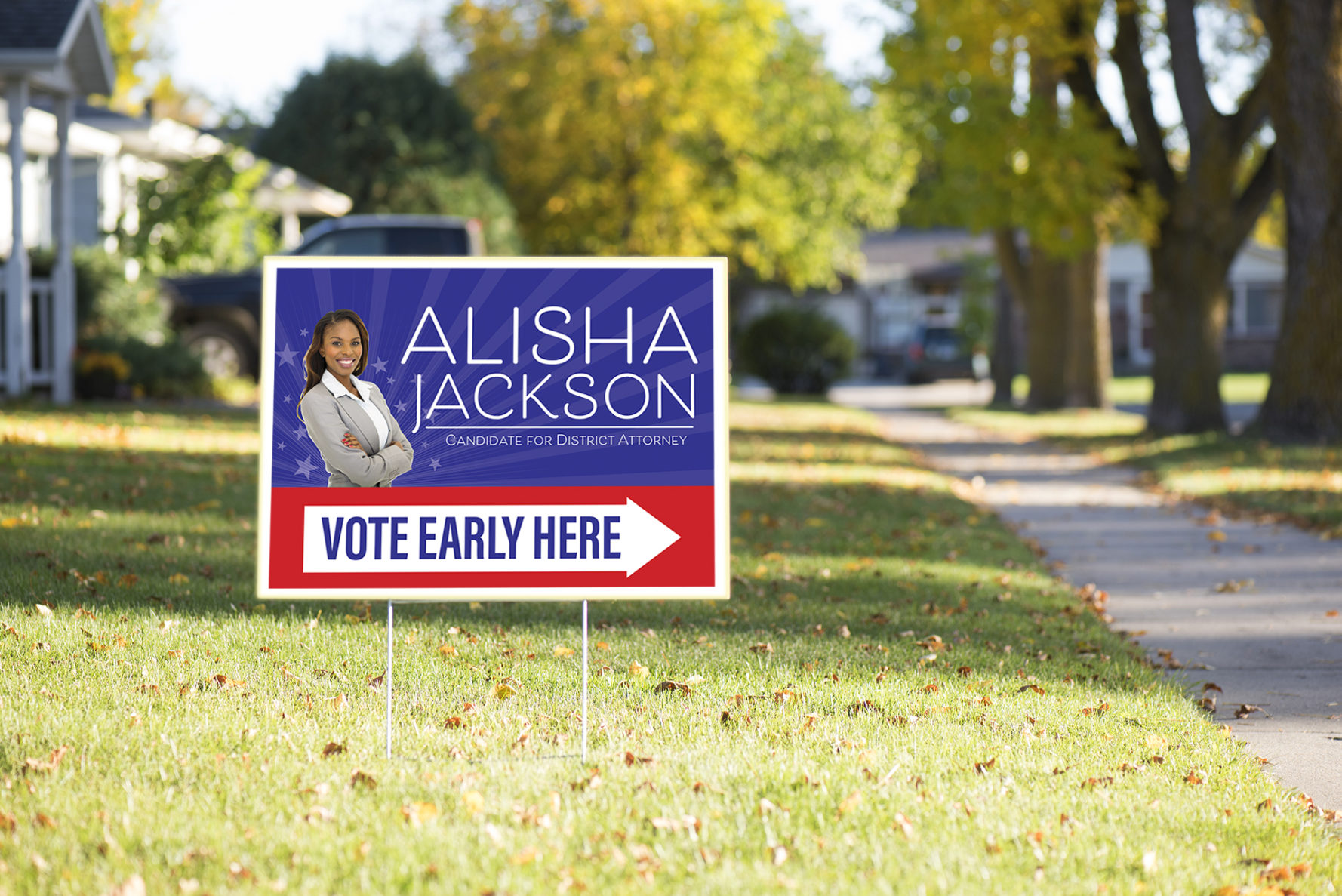 election campaign yard signs